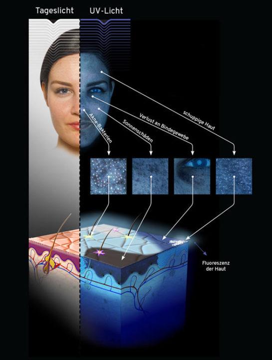 Triemer Aeshetics Dresden Kosmetik Kosmetikbehandlung Haut Hautanalyse Observe SkinScope